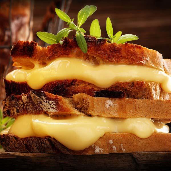Fabrica de queijo para hambúrguer